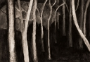 Nacht in Abisko, tekening op papier, 29x20cm