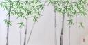 Caroline Mars, Black Bamboo (B), 70x130cm