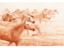 Frank Zindler, paarden in Camaque, aquarel, 64x48cm